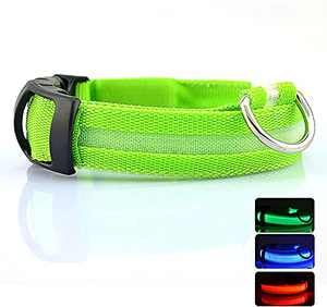 """LED Nylon Dog Collars Classic Solid Color USB Rechargeable Pet Safety Collar,Adjustable for Small Medium Large Dogs (Green, S(14-17""""))"""