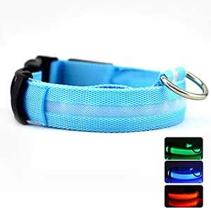 """LED Nylon Dog Collars Classic Solid Color USB Rechargeable Pet Safety Collar,Adjustable for Small Medium Large Dogs (Blue, S(14-17""""))"""