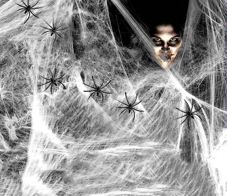AONAT 120g Pack of 2 Halloween Stretchable Spider Web with 12pcs Fake Spiders Haunted House Cobweb for Halloween Night Party Decoration