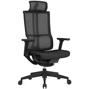 HARBLAND Ergonomic Office Chair, High Back Mesh Computer Chair with Adjustable Headrest, 4D Armrest, Sliding Seat, High Back Desk Chair for Home Office